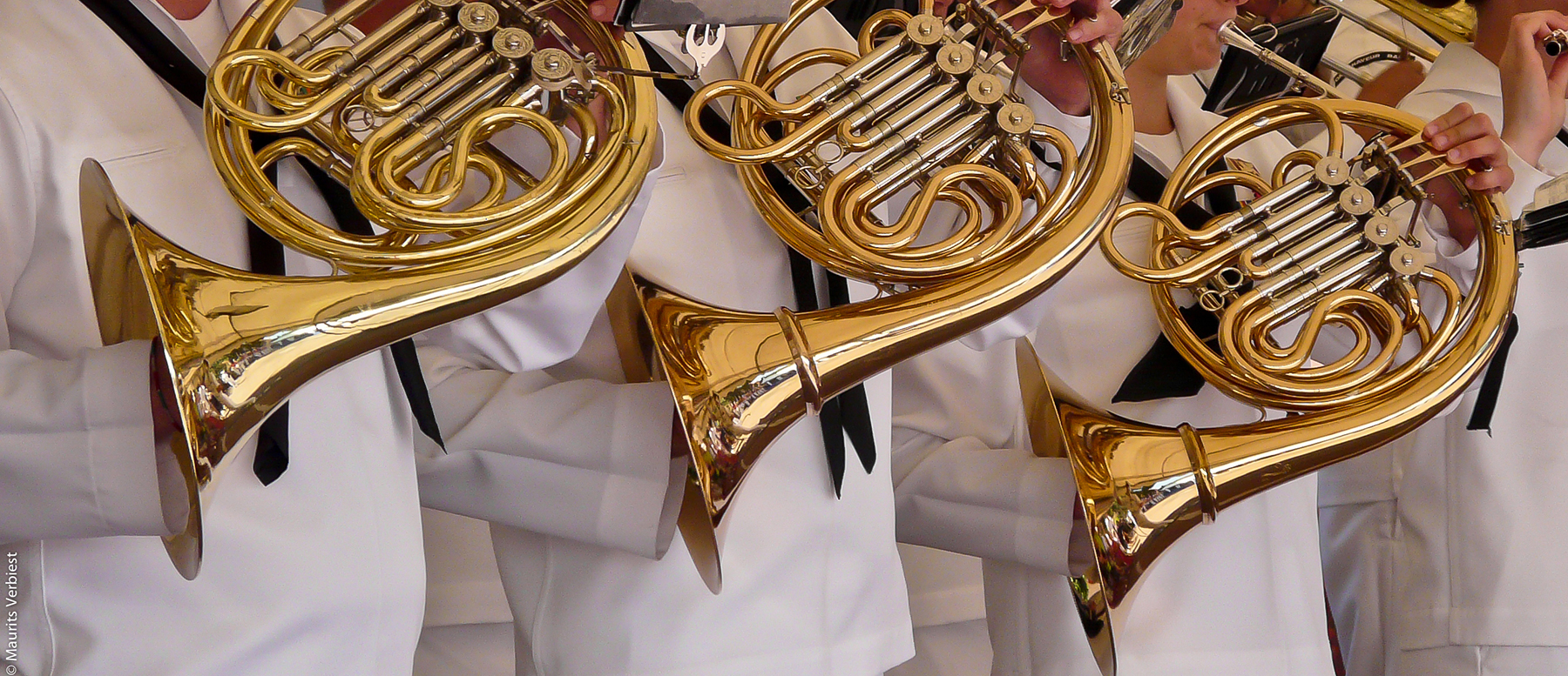 The Brass Instrument Family: French Horns, Trombones, Low Brass